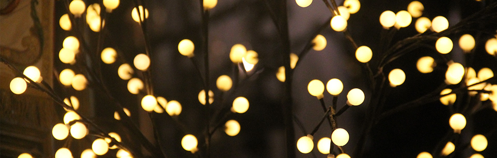 Deck the halls with boughs of savings a guide to christmas lights mozeypictures Gallery