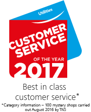 Customer service of the year 2017