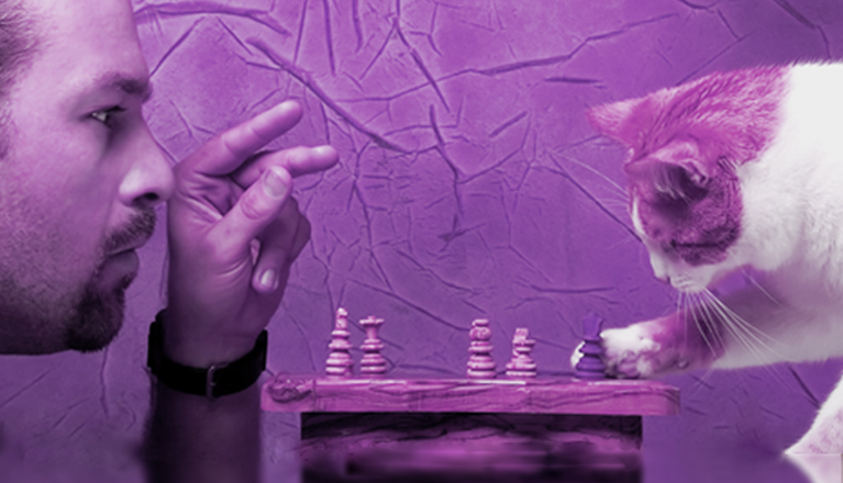 Man playing chess with cat